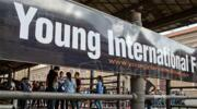 A Rimini torna Young International Forum: studenti e insegnanti tra offerte lavoro e studio all'estero