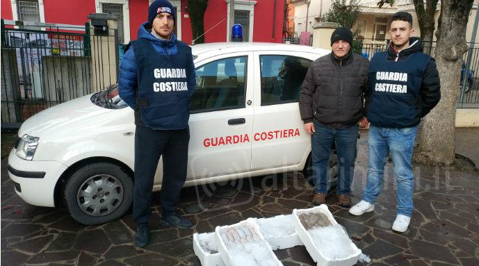 Pesce sequestrato a Cattolica dalla Guardia Costiera