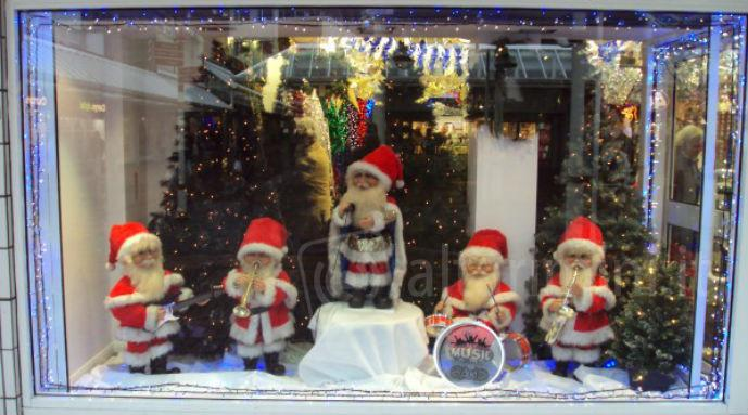 Christmas Ornament Display Case